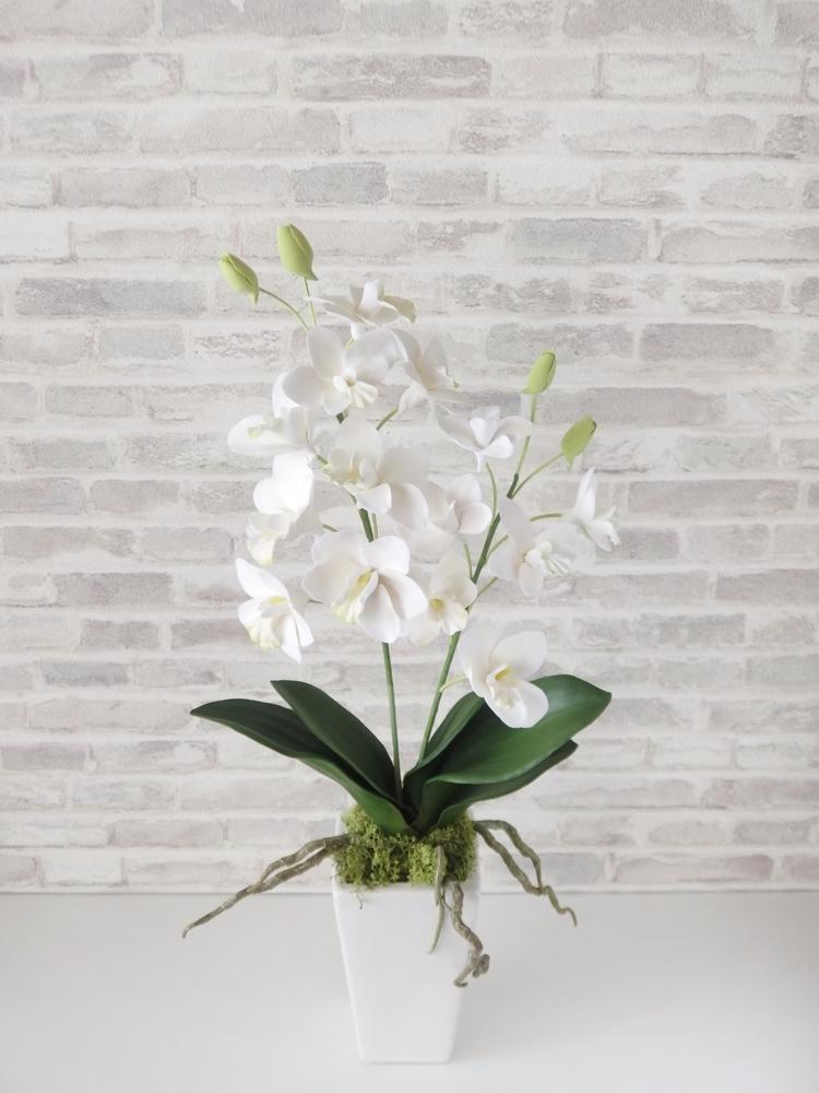 レッスン日和 ~ 清楚な白のデンファレ、花器アレンジメントレッスン